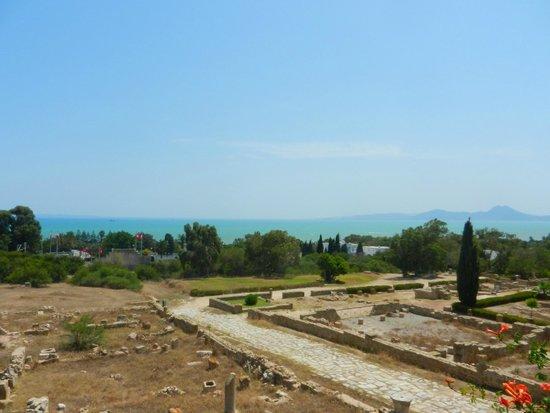 Carthaginian Ruins: ville romane