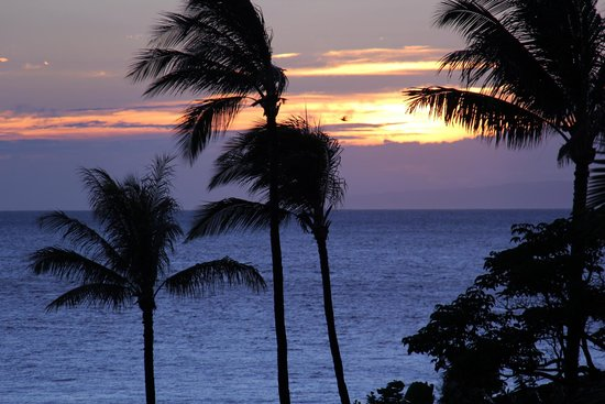Andaz Maui At Wailea: View from the pool