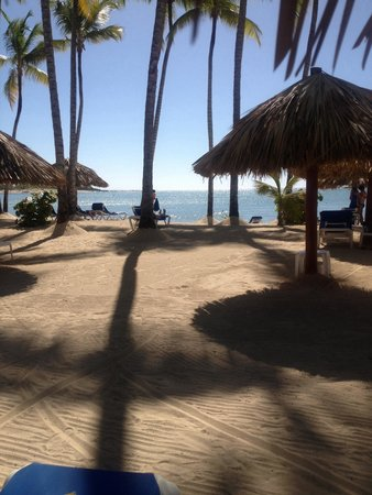 Grand Bahia Principe La Romana: Again don't listen to bad beach reviews- 'twas lush!!