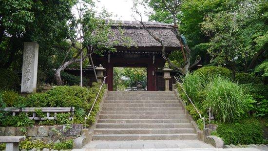 Jindai-ji Temple : 深大寺山門