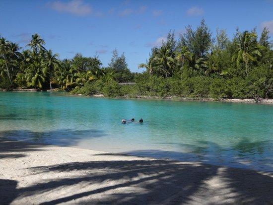 Four Seasons Resort Bora Bora: snorkeling in FS inner lagoon