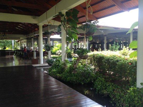 Paradisus Punta Cana Resort : Main Lobby