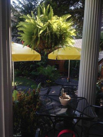 Rehoboth Guest House: Back Yard Garden
