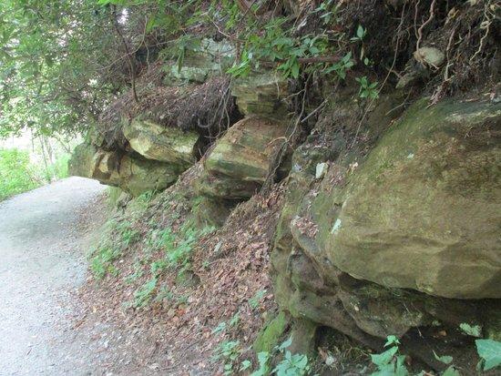 Hickory Nut Trail - Chimney Rock State Park