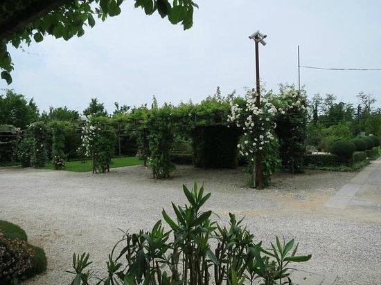 Agriturismo Ca' Danieli: Some of the gardens