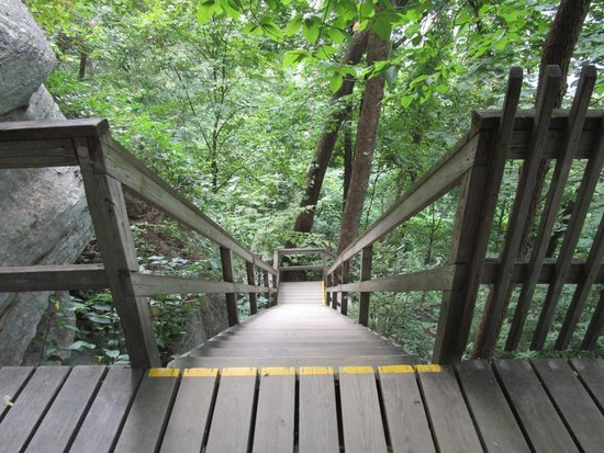Chimney Rock State Park: Stairs leading to the Hickory Nut Trail