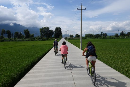 The Linden Centre: Borrowed Center's bikes and rode through rice fields