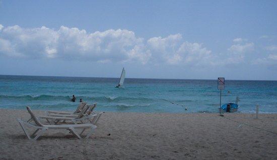 Catalonia Gran Dominicus : Beach