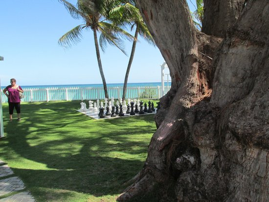 Bougainvillea Beach Resort : Wedding venue