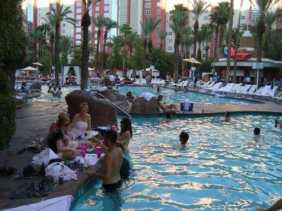 Flamingo Las Vegas Hotel & Casino: Piscina