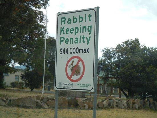 The Boulevard Motel: no rabbit pie in queensland