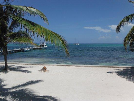 Belizean Shores Resort: Beach