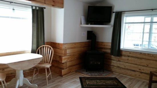 Denali Fireside Cabins & Suites : Our cabin