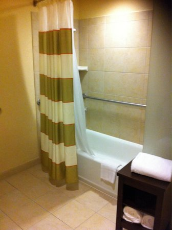 Courtyard Washington, DC/U.S. Capitol: Over bath shower - Courtyard by Marriott Washington DC