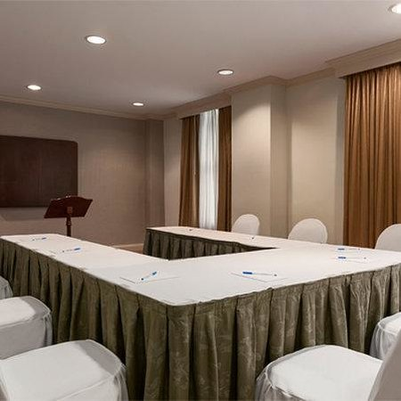 The Whitney Hotel: Meeting Room
