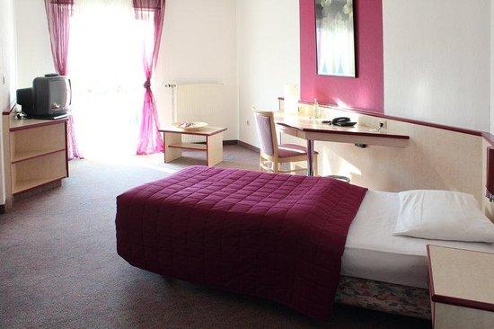 Halbersbacher Airport Hotel Frankfurt: Guest Room