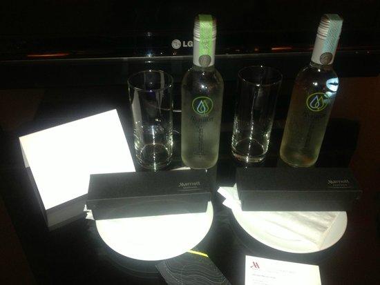 Santiago Marriott Hotel: Mini Bar