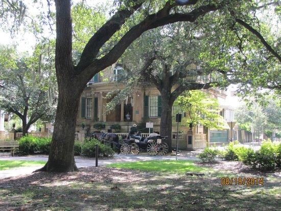 Savannah Dan Walking Tours: Owens Thomas House