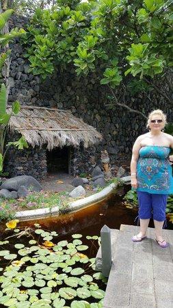 Jardín Acuático: Lovely