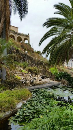 Jardín Acuático: So peaceful