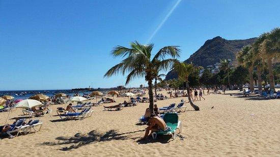 Playa de las Teresitas : Nice to sunbathe