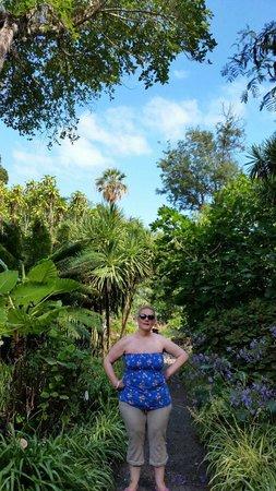 Jardín Botánico: Plants
