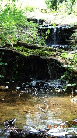 Ijams Nature Center : Ijams