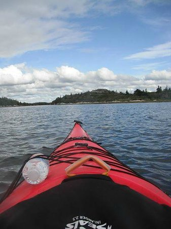East Coast Outfitters Sea Kayaking: the view from the  kayak