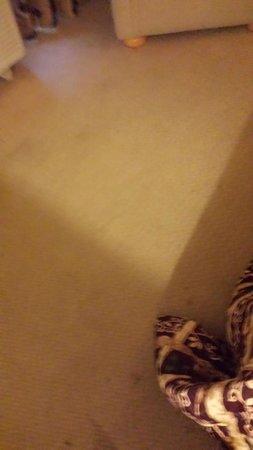 Knights Inn Amarillo Airport: Nasty carpet