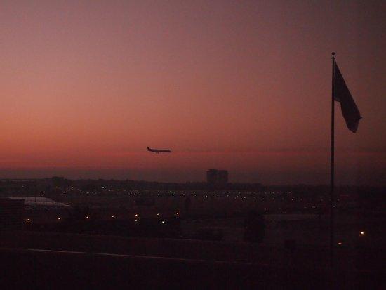Hilton Los Angeles Airport : 空港近くのホテル