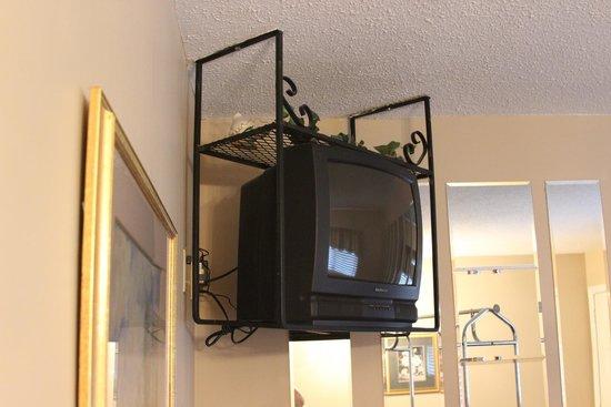 Oak Square at Gatlinburg: TV in living room