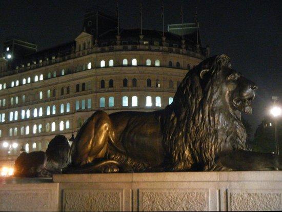 Trafalgar Square : Lions guard Admiral Nelson's statue