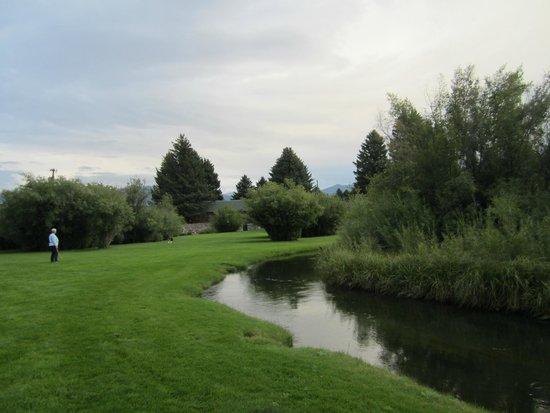 El Western Cabins & Lodges : meadow behind cabins