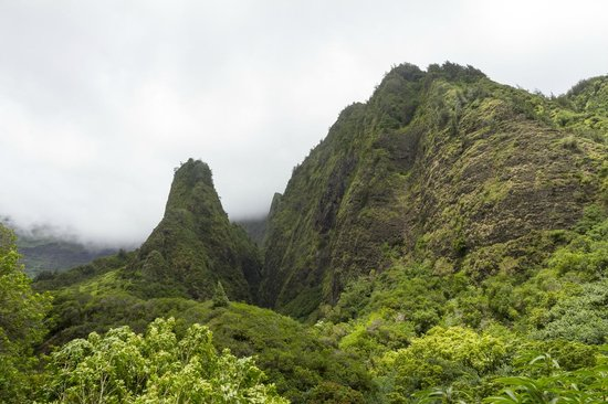 Iao Valley State Monument: Iao Needle from the end of the trail