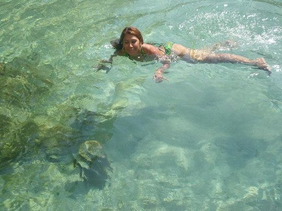 El Mirador Acapulco Hotel: alberca agua salada