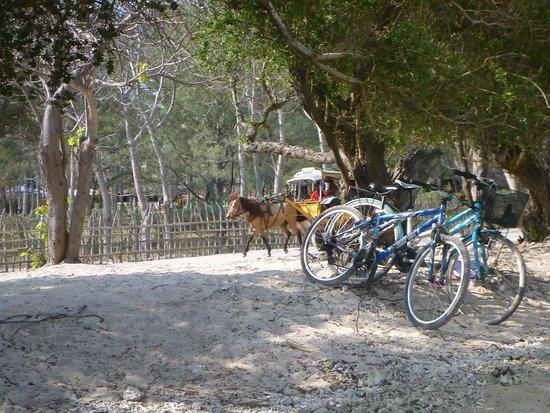 Villa Almarik Resort Lombok: riding around the island..stopping for a swim.