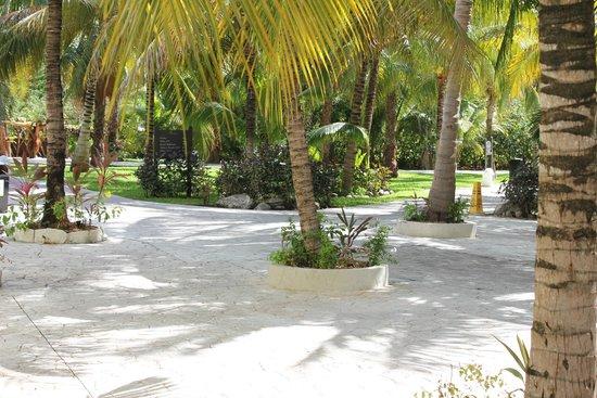 El Dorado Royale, by Karisma: beautiful grounds