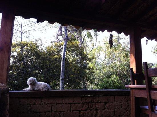 Raquira Silvestre Lodge : La Casita´s porch