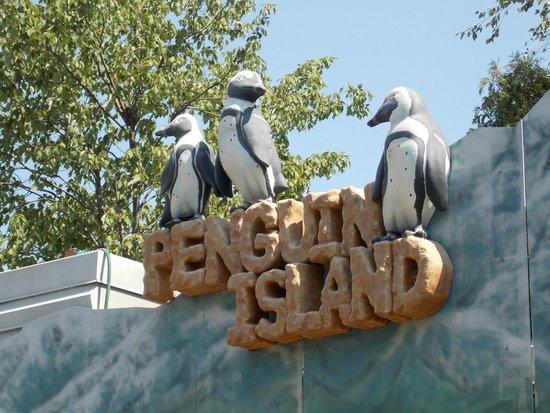 Adventure Aquarium: The penguins