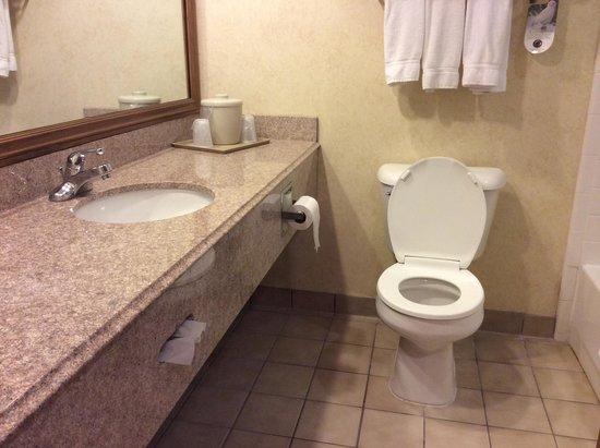 Holiday Inn Express Brighton: Bathroom