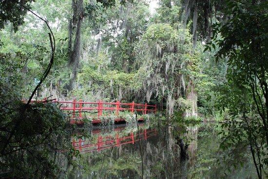 Magnolia Plantation & Gardens: Red Bridge