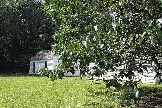 Magnolia Plantation & Gardens: Slave House Tour