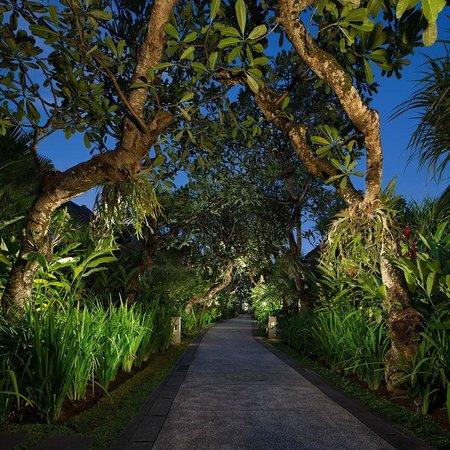 Sun Island Boutique Villas & Spa: Garden