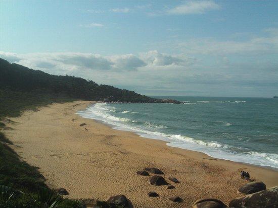 Taquarinhas Beach: Taquarinhas
