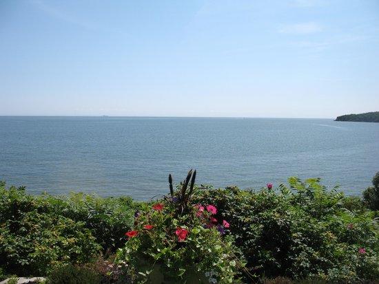 Weir Inn: Water View at High Tide