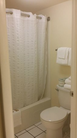 Flamingo Motel : Bathroom