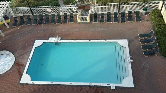 Flamingo Motel: Pool view