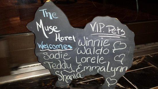 Kimpton Muse Hotel: VIP pet board