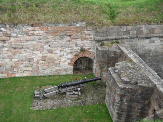 The Elizabethan Walls: Hidden Gun