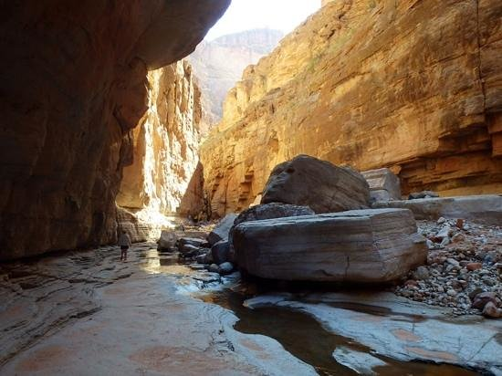 Colorado River & Trail Expeditions: National canyon, off the Colorado river